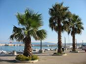 Riviera Crikvenica  - Photo 1