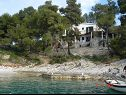 Apartments - OS2022 - Cove Jagodna (Brusje) - Island Hvar  - Croatia - house