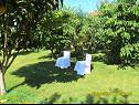 Apartments - OS5302 - Rovinjsko Selo (Rovinj) - Istria  - garden (house and surroundings)