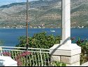 Apartments Lucija A1(4+2) Korcula - Island Korcula  - terrace view (house and surroundings)
