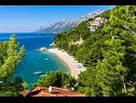 Apartments SA1(3), SA2(4), SA3(4), SA4(5), SA5(3+2), SA6(2), SA7(4), A8(6+2), SA9(2+2), SA10(2) Brela - Riviera Makarska  - sea view (house and surroundings)