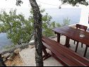 Apartments Neda SA1(2), A2(4) Lukovo Sugarje - Riviera Senj  - Apartment - A2(4): garden terrace (house and surroundings)