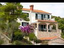 Apartments More A1(4+2) Cove Donja Krusica (Donje selo) - Island Solta  - Croatia - house
