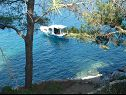 Holiday home Dob H(4) Cove Stoncica (Vis) - Island Vis  - Croatia - beach